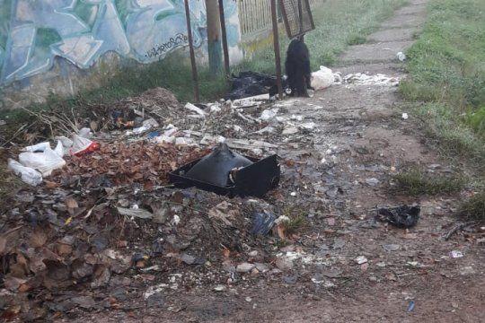 la plata: vecinos de villa elisa denuncian basural abierto
