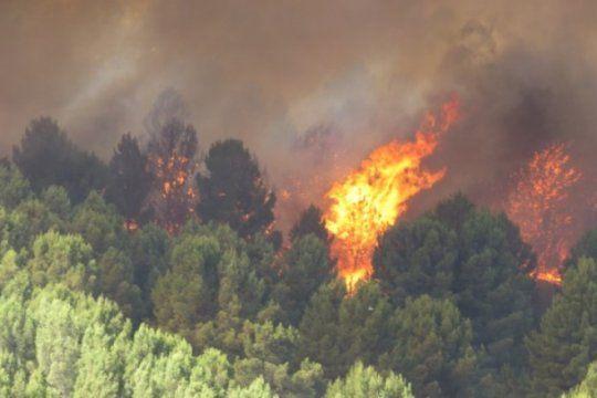 devastador incendio en sierra de la ventana: para el intendente ?la situacion es desesperante?