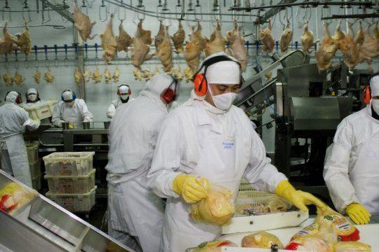 en la mesa de los argentinos, la carne de pollo gana cada vez mas espacios