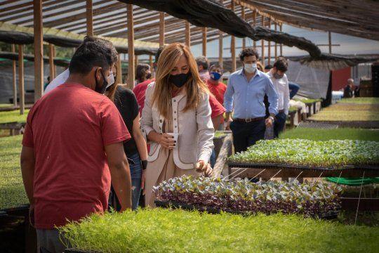 Victoria Tolosa Paz recorrió la producción agrícola de la Cooperativa junto a Daniel Arroyo