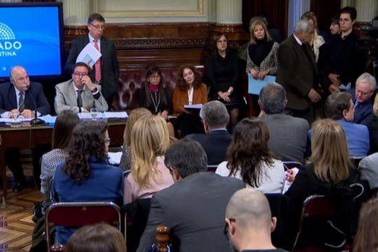 aborto legal: habra mas de 60 expositores en el senado antes de tratarse en sesion el 8 de agosto