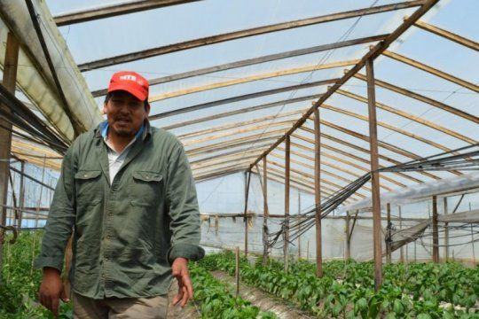lanzan una ley para proteger a los cordones frutihorticolas, acechados por la expansion agropecuaria
