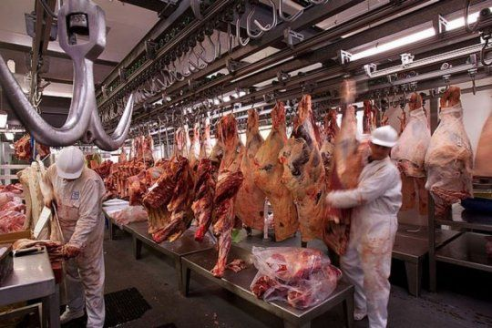 el gobierno redujo el peso minimo de faena de bovinos y se genero la polemica