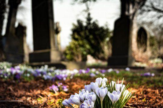 ?que abran los cementerios?, la cruda carta de un padre que perdio a su hijo