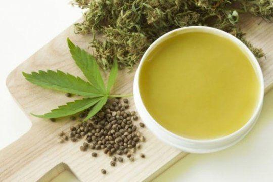usuarios y cultivadores cuestionan la eficacia del aceite de cannabis que proveeran las farmacias