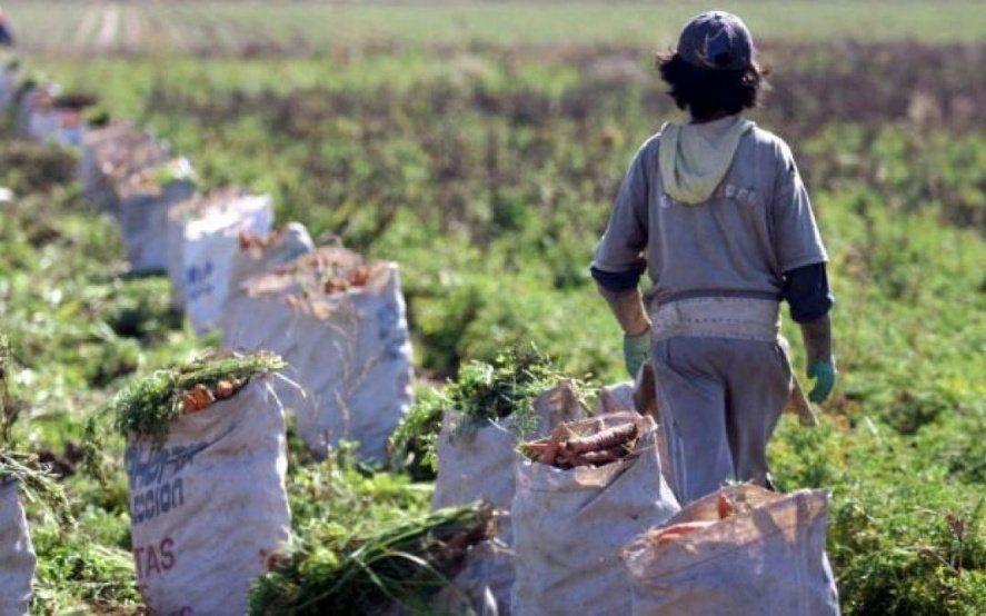 Día Mundial contra el Trabajo Infantil: el flagelo que afecta a más de 1 millón de chicos argentinos