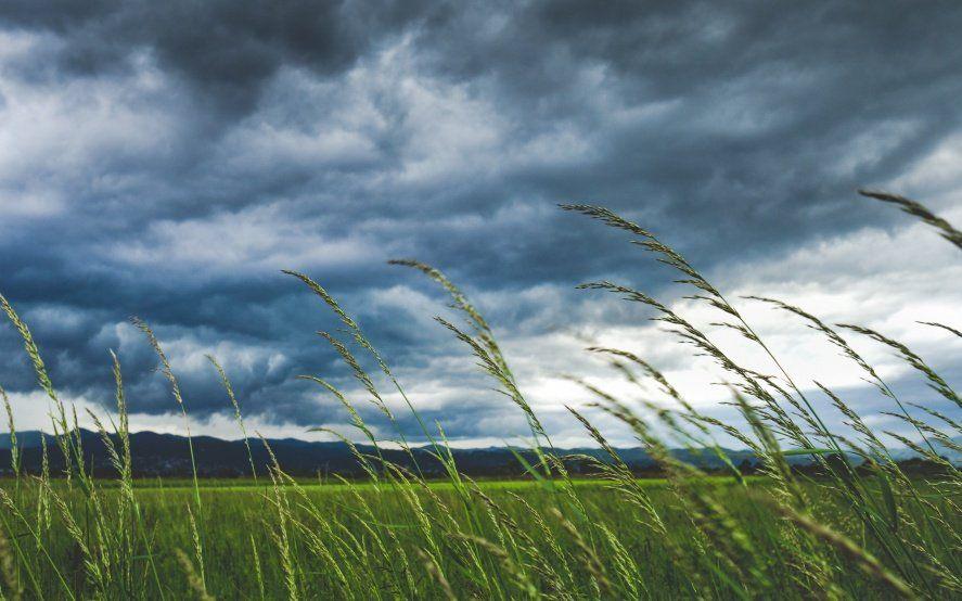 Alerta meteorológico por vientos intensos en el centro y el sur de la Provincia