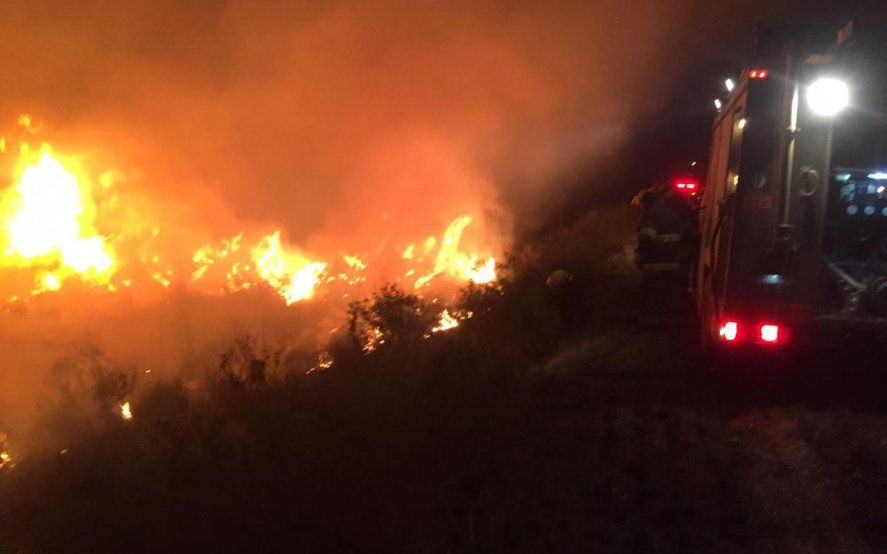 Mirá el video: denuncian a un productor ganadero por los incendios del delta