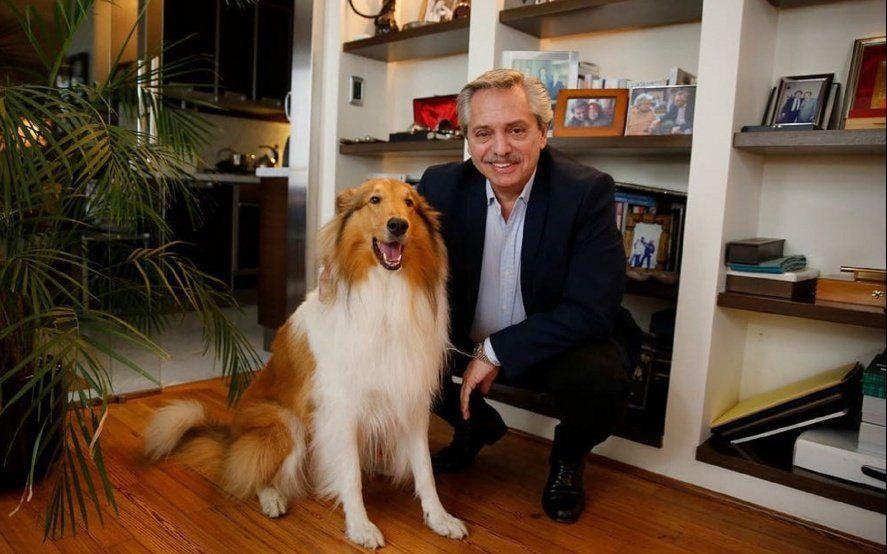 """""""¡Feliz cumpleaños mi amado amigo Dylan!"""": el emotivo saludo de Alberto Fernández para su perro"""