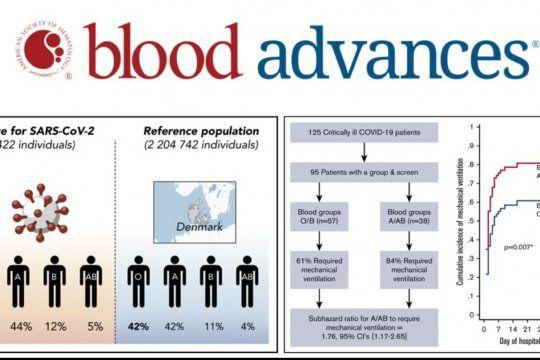El estudio de una publicación científica dada a conocer ayer que señala la preferencia del virus por la sangre tipo A