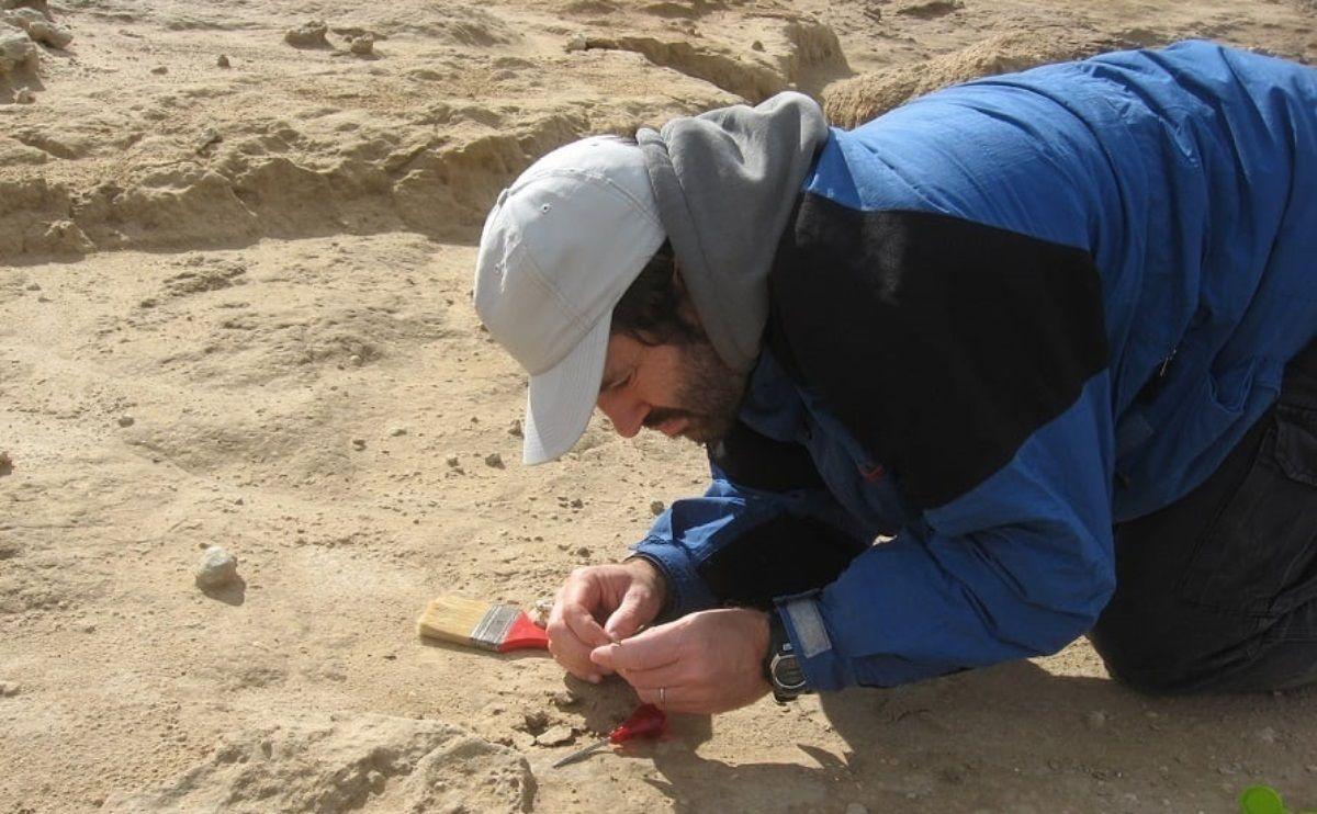 Los restos fueron hallados en las inmediaciones del arroyo La Ballenera