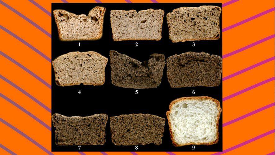 Muestras de los panes elaborados a partir de las 8 premezclas y con la harina comercial (9). El pan elegido es el número 4.
