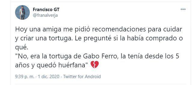 El cantante Gabo Ferro tenía una tortuga como mascota desde los 5 años.
