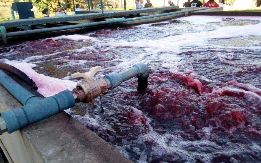 Tigre clausuró una fábrica de alfombras por contaminación del Río Reconquista