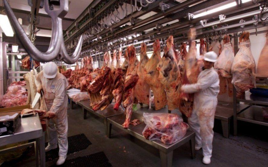 Vienen por todo: de cada cuatro kilos de carne bovina exportada, tres fueron para China