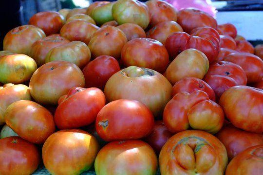 la fiesta del tomate platense se pospuso por la lluvia: ¿cuando sera?
