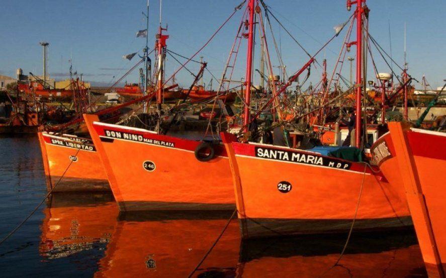 Las cámaras pesqueras de Mar del Plata le piden medidas a Montenegro para salir de la crisis del sector