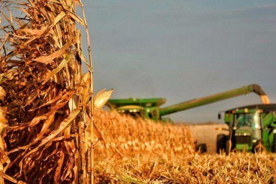 buen pronostico para la produccion agricola: alcanzaria los 138 millones de toneladas