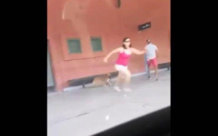 Repudio en las redes: subió corriendo al tren Roca y abandonó a su perro en el andén