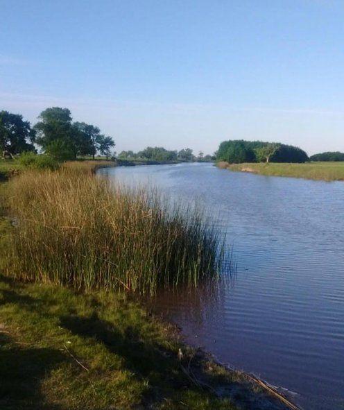 El arroyo tiene una gran importancia por su función ecosistémica, considerándolo un área de humedal que regula el sistema hídrico.