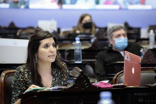 El proyecto impulsado por Máximo Kirchner que protege propiedades afectadas por incendios consiguió hoy dictamen favorable