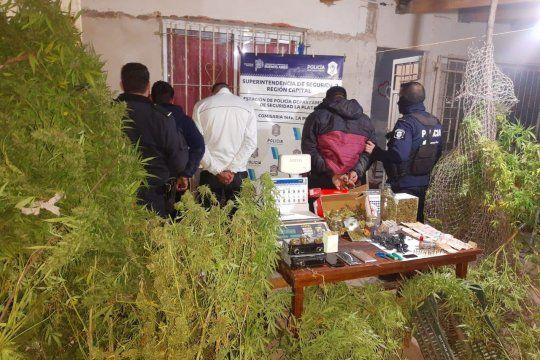 La banda secaba las hojas de marihuana en un galpón en 165 y 527, en La Plata
