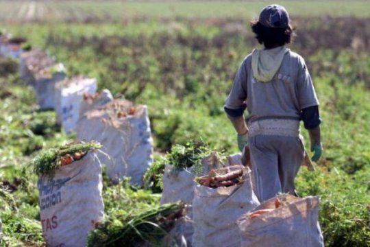 dia mundial contra el trabajo infantil: el flagelo que afecta a mas de 1 millon de chicos argentinos