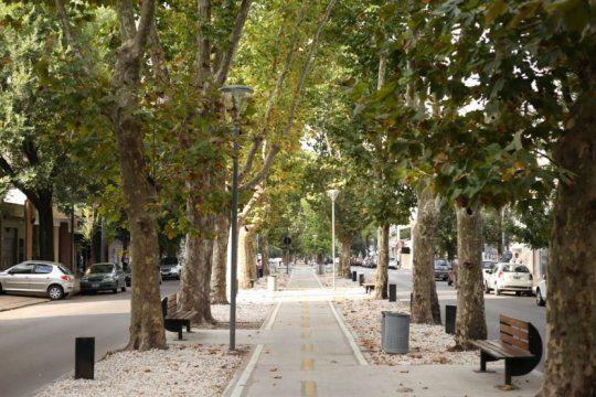 un tesoro de todos: guia verde para conocer la riqueza arborea de la plata