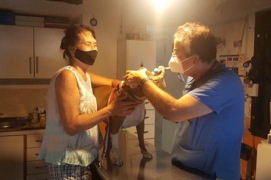 fundo un refugio en moreno donde atienden animales gerontes con masajes, ultrasonido y acupuntura