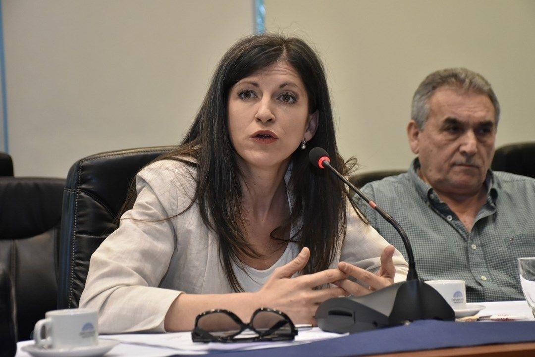 Fernanda Vallejos perdió las elecciones de 2017, aunque insiste en que es la dueña de los votos.