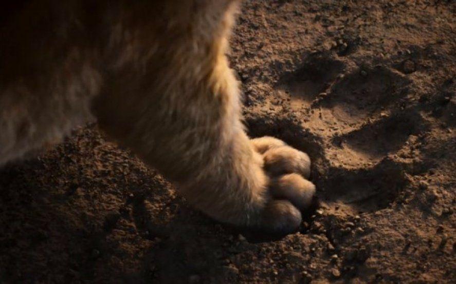 ¡Hakuna matata! A 100 días del estreno, Disney publicó un nuevo tráiler de El Rey León