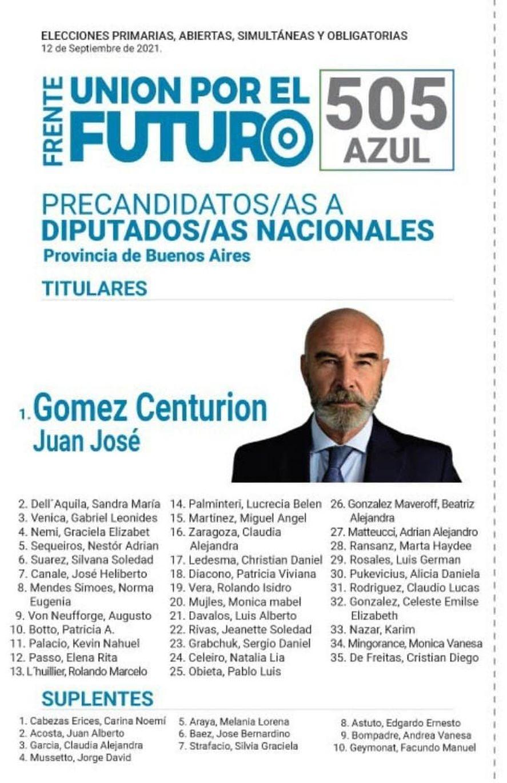 Elecciones PASO 2021: boletas y pre candidatos a Diputados nacionales de la provincia de Buenos Aires
