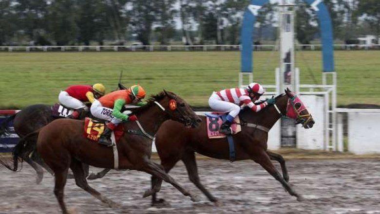 Comitiva del Jockey Club de Azul llegó a La Plata tras anuncio de Vidal sobre los hipódromos