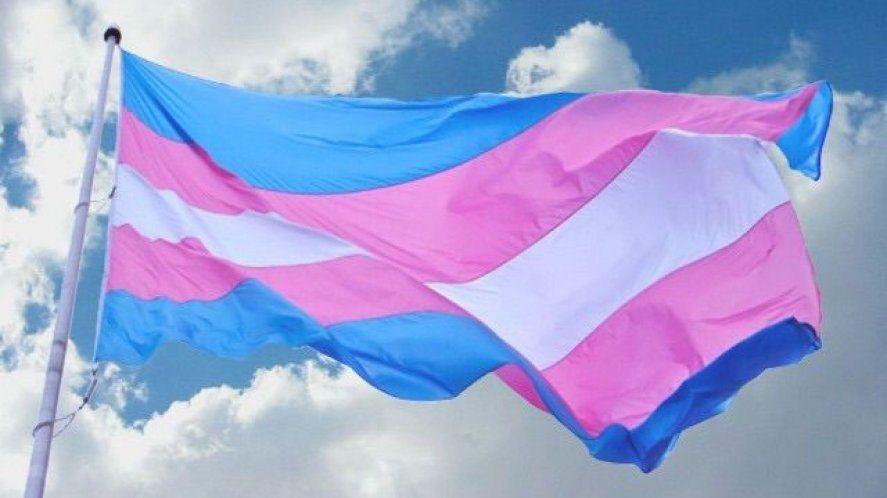 Una ley para promocionar el acceso al empleo formal de personas travesti-trans.