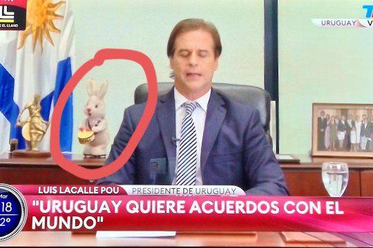 El conejo de peluche que eclipsó las declaraciones del Presidente de Uruguay en el programa de Morales Solá