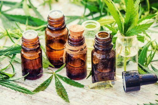el aceite de cannabis y los mejores resultados: ?se evitaron dos de cada tres convulsiones?