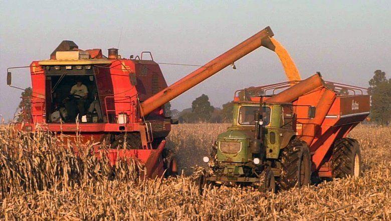 Malestar en CARBAP por las restricciones a la exportación de maíz
