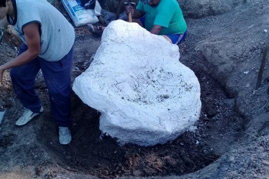un megamamifero en marcos paz: encontraron restos de un gliptodonte en una estancia