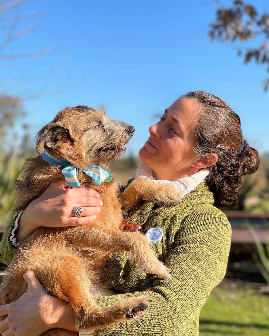 La hostería canina de Del Viso que aloja a los perros como si fueran humanos