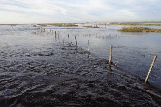 el gobierno decreto la emergencia agropecuaria en trenque lauquen y general villegas