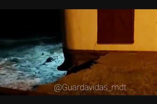 Guardavidas de Mar del Tuyú grabaron el momento justo del derrumbe