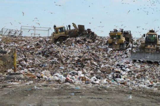 la peor cara de la crisis: 14 menores intoxicados por comer alimentos de un basurero en olavarria