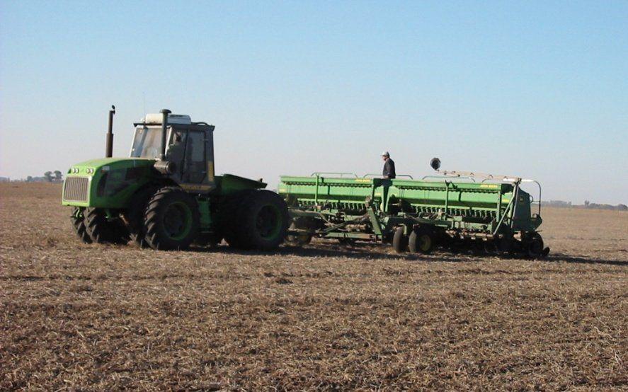 Alivio para los cultivos bonaerenses: anuncian lluvias para los próximos siete días