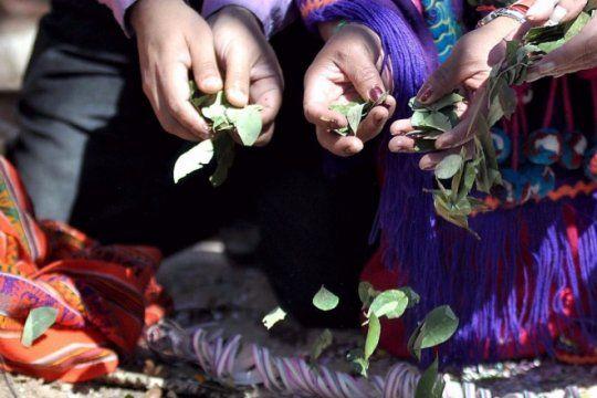 dia de la pachamama: ¿de donde proviene la tradicion y como se prepara la cana con ruda?