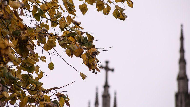 Se acerca el otoño y con él ¿llega el frío? enterate cómo estará el clima los próximos días