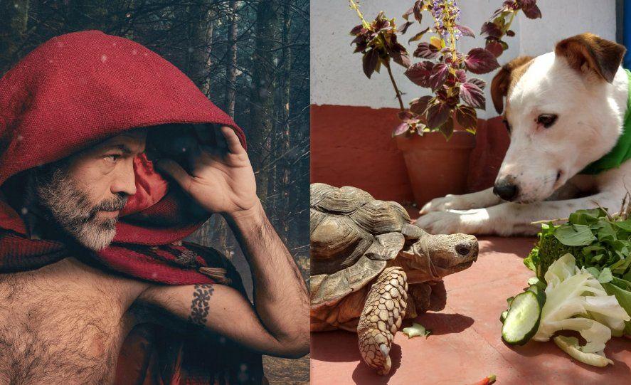 Gabo Ferro murió en octubre y tenía una tortuga desde los 5 años.