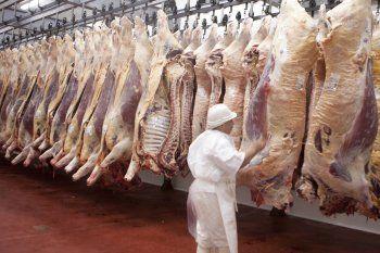 El Gobierno liberó sólo el 50% de las exportaciones de carne. Desde CARBAP cuestionaron la medida.