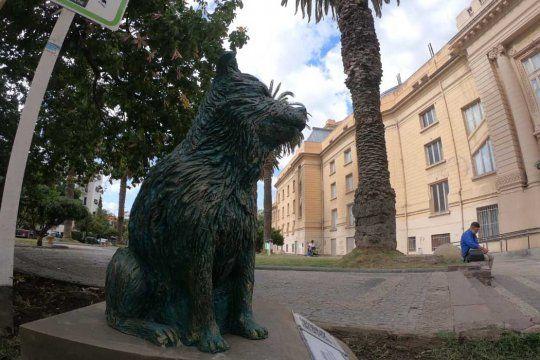 bahia blanca: inauguraron el monumento al perro callejero