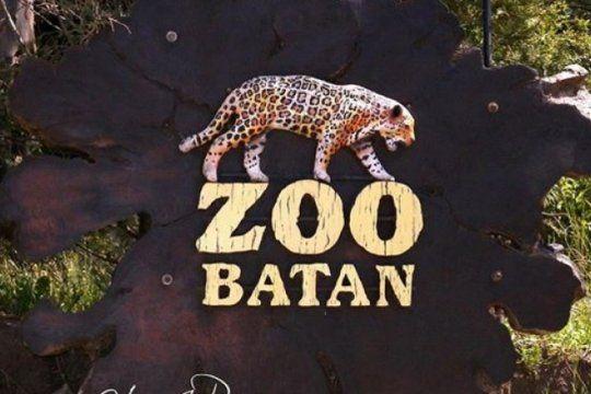 de zoo a bioparque: buscan reubicar a 7 osos, 17 tigres y 5 pumas en santuarios o reservas