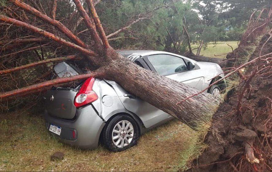 ¿Tornado en Darregueira? Mirá los destrozos que dejó la tormenta